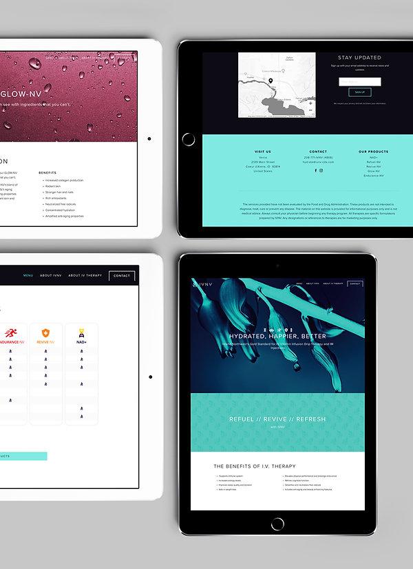 IVNV-webpage-mockup1.jpg