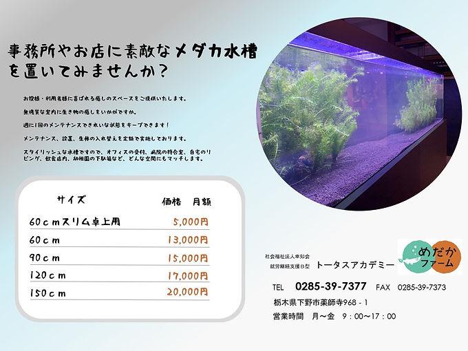S__23273520_edited.jpg
