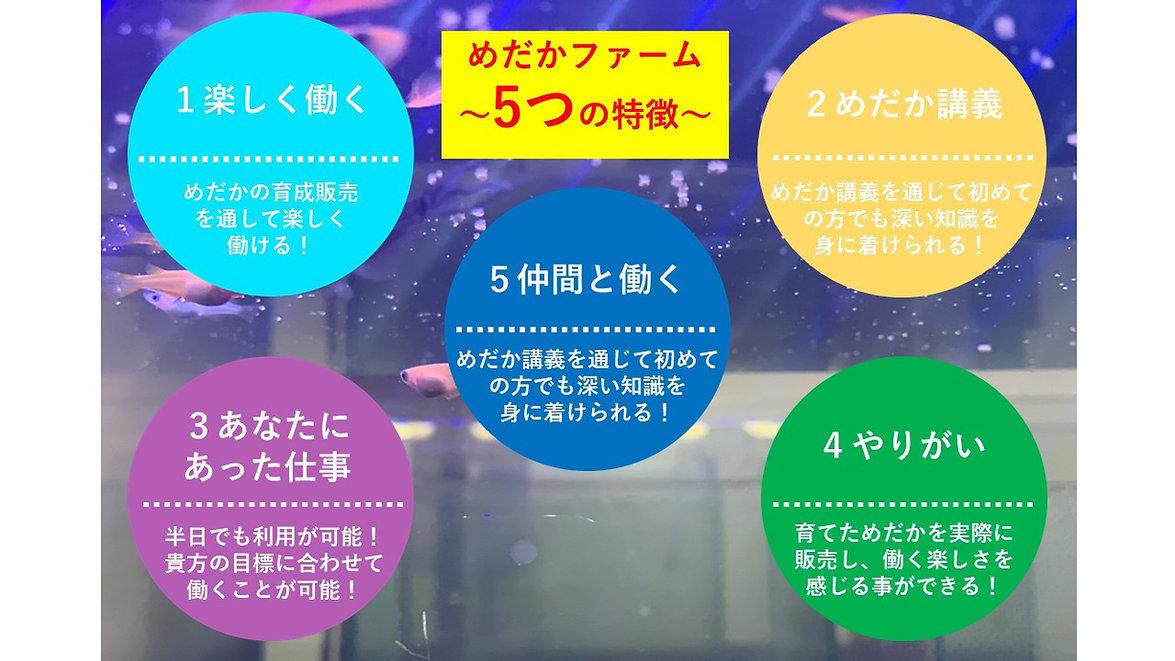 アカデミー2.jpg