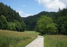 Riggenbach