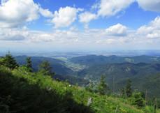 Blick vom Belchen aufs Münstertal und Rh