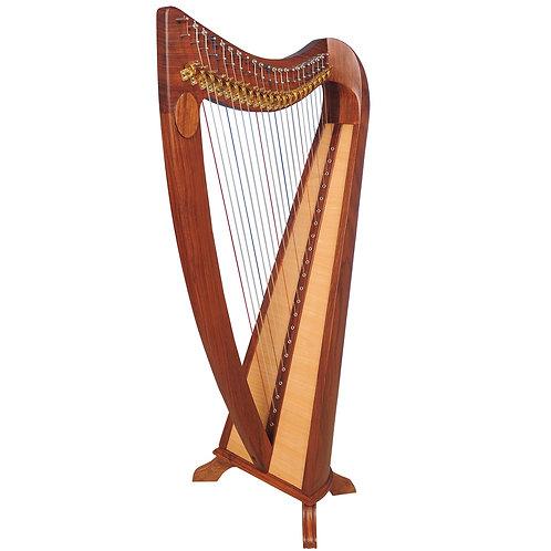 Claddagh 22 String Rosewood Harp