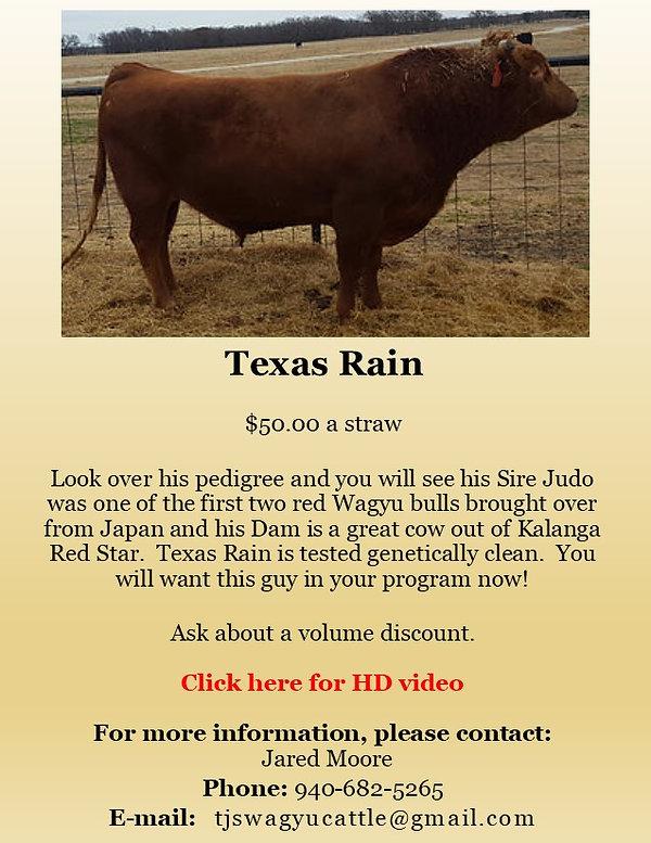 Semen Ad Texas Rain VIDEO.jpg
