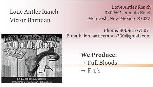 Lone Antler Ranch ad for P2P BETTER LOGO