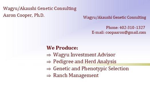 Wagyu Agayushi ad P2P LOGO ADDRESS.jpg