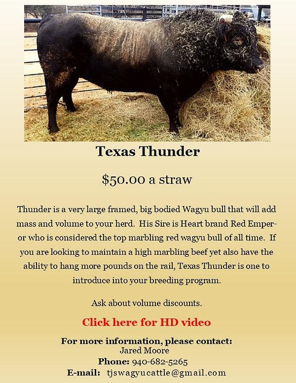 Semen Ad Texas Thunder VIDEO.jpg
