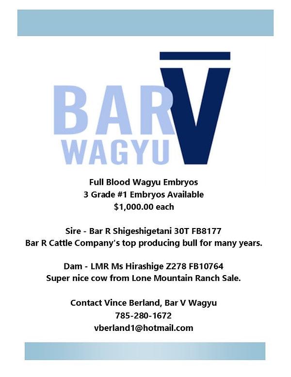 5 Embroy ad  Shig x Hira Bar V.jpg