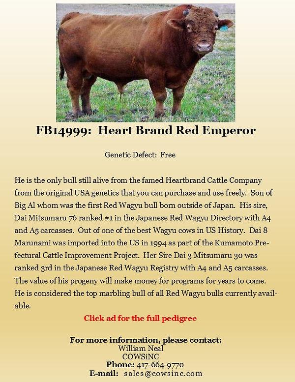 Semen Ad Heart Brand Red Emperor.jpg