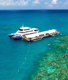 sanctuary-reef-tour.jpg