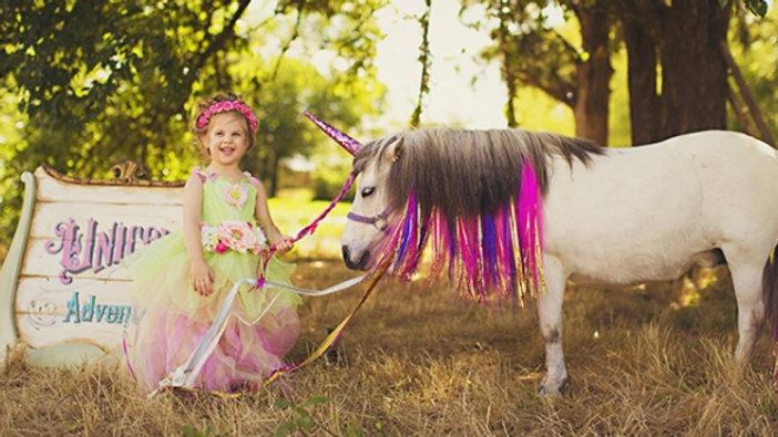 Pony/Unicorn Visit**