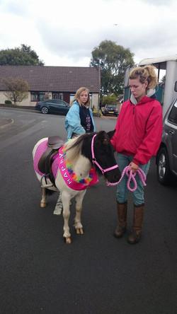 Pony Tinkerbelle