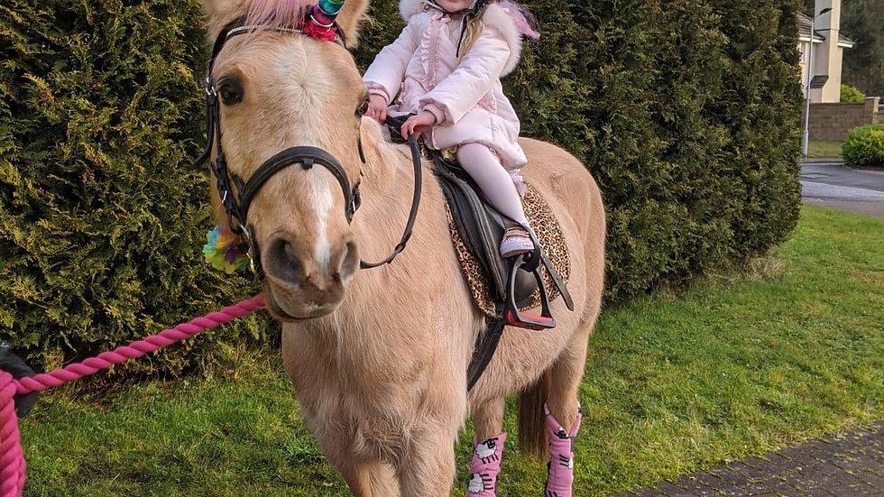 Pony/Unicorn Visit*
