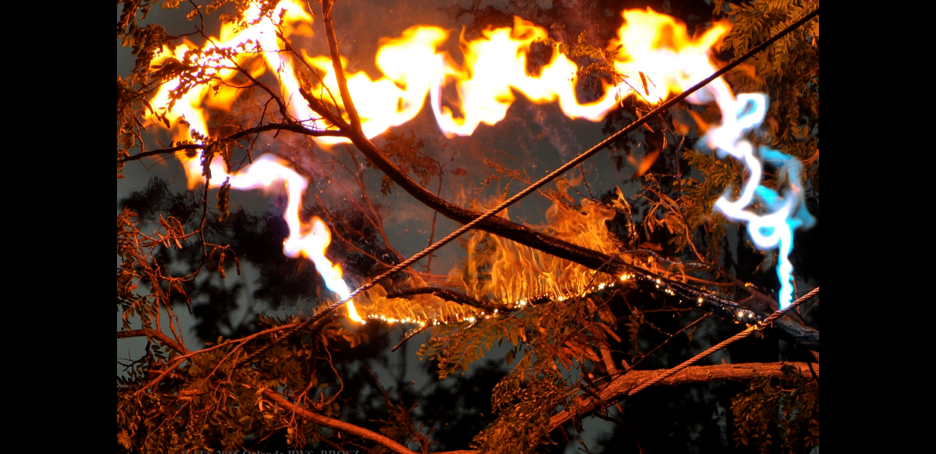 Wildfires - of electical origin.png