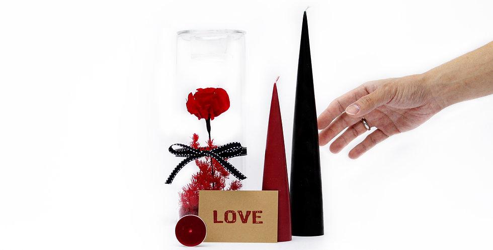 wenderplant terrarium, terrarium sydney, sydney terrarium, preserved flower, everlasting rose, valentine's day gift set