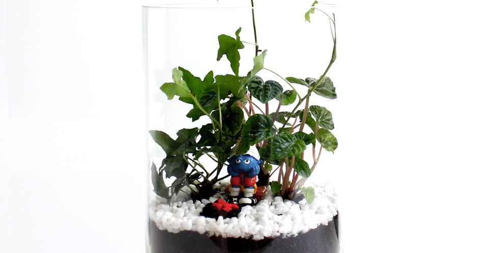 The Smurfs Collection Terrarium