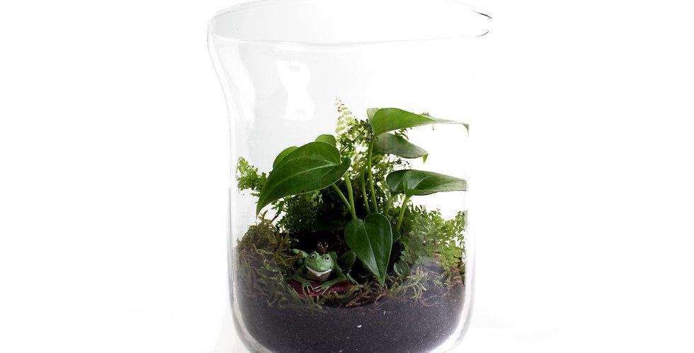 Open Terrarium in Large Vase
