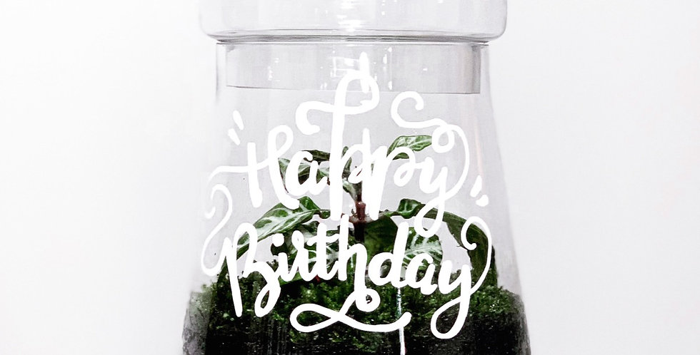Message Tapered Biscuit Jar Terrarium