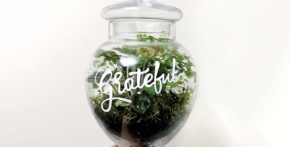 """Grateful"" Message Terrarium"