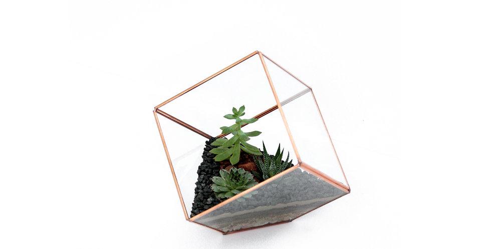 Geometric Succulent Terrarium Rose Gold