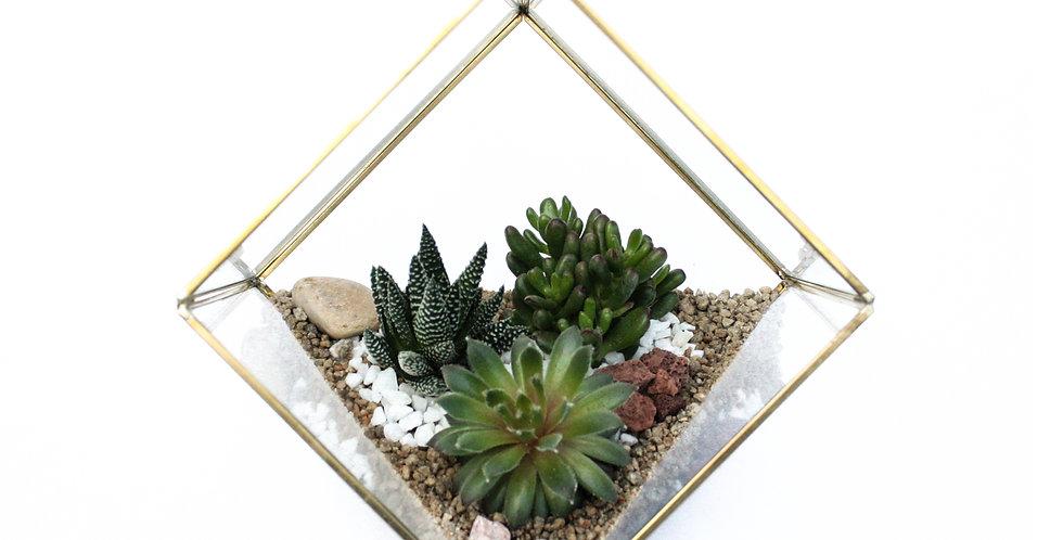 Geometric Succulent Terrarium Gold