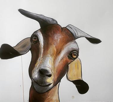 Colbert Mashile - Goat
