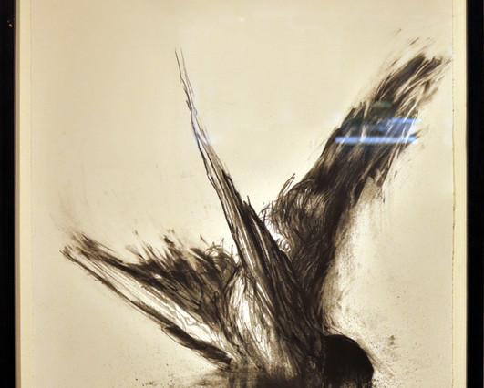 Adriaan Diedericks - Fight Or Flight I