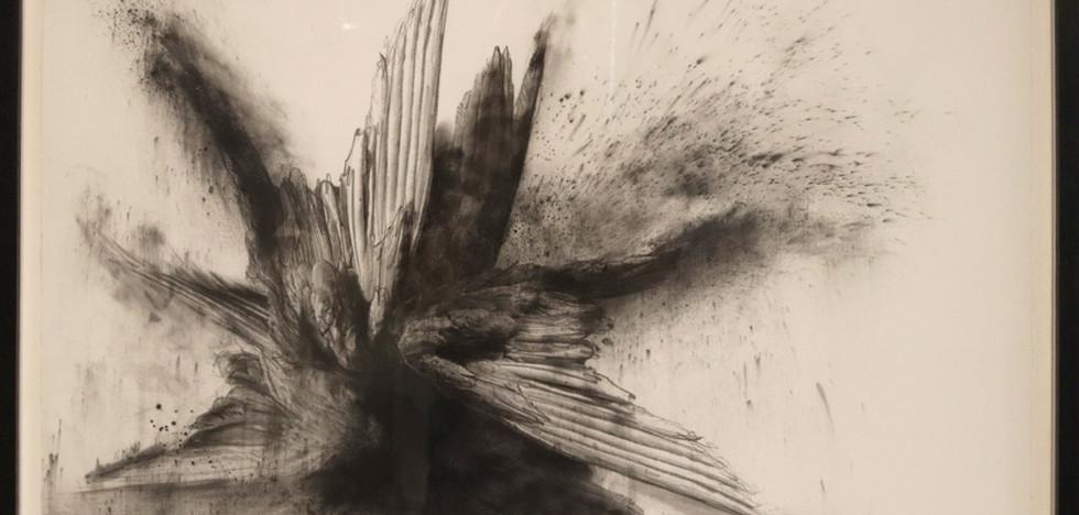 Adriaan Diedericks - Seraph IV Drawing