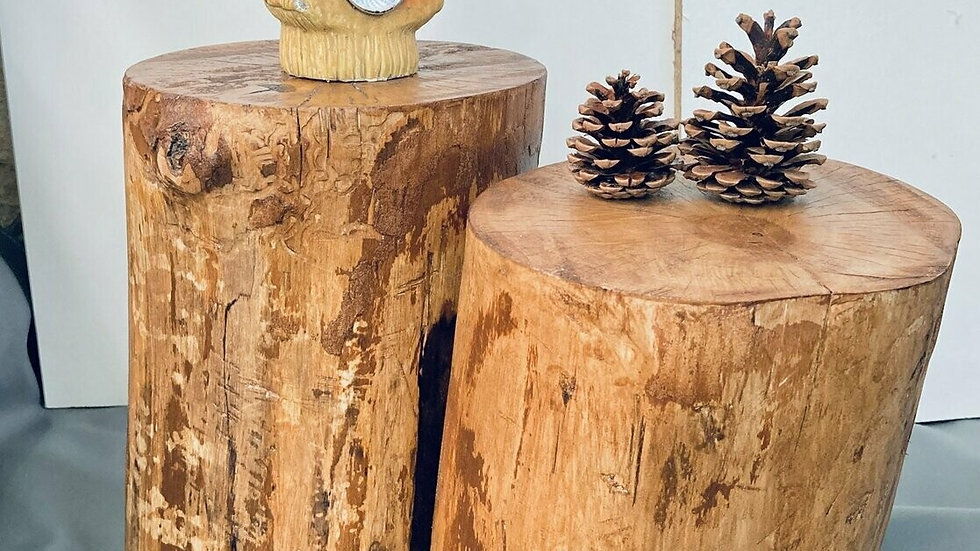 Tree Stump / Wood Stand / Small Side Table