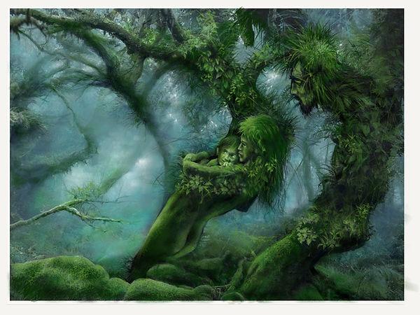 les arbres communiquent malgré leur distanciation