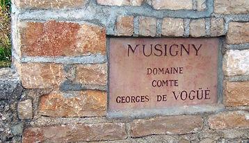 Comte de Vogüe