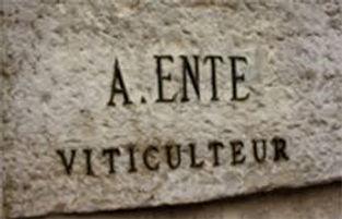 Arnaud Ente