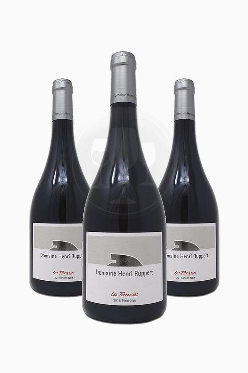 Pinot Noir Barrique rouge 2019 0,75L