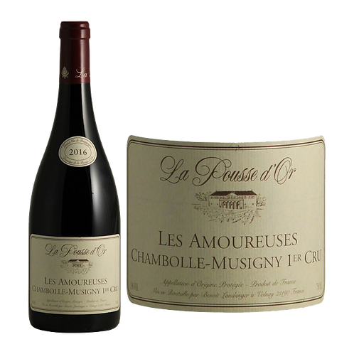 Chambolle Musigny 1er Cru Amoureuses  rouge 2011 0,75L