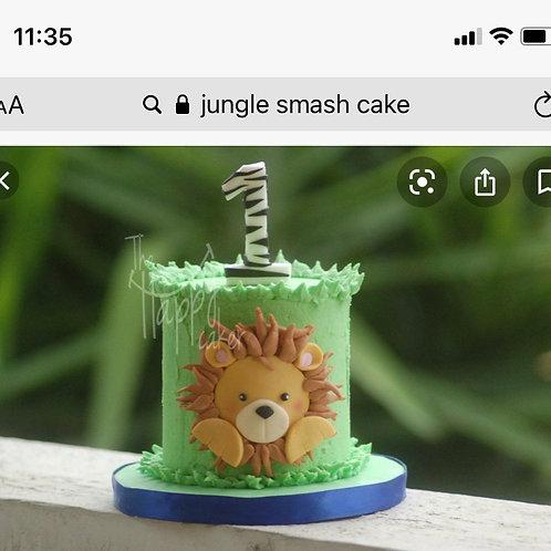 Lenee Jungle Smash Cake 6/19