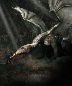 DragonAndElf2019