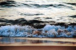 Unsalted Surf