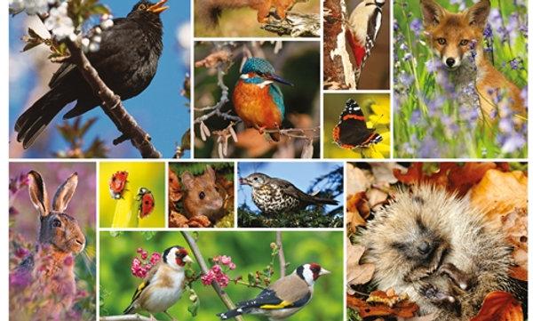 RSPB Great British Wildlife - 1000 Pieces