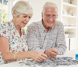 12 Month 500 Piece Puzzle Subscription