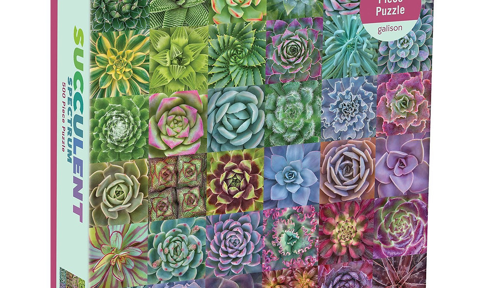 Succulent Spectrum-  500 Pieces