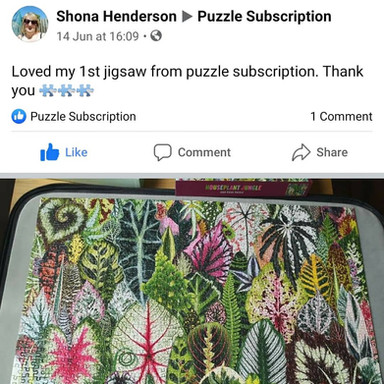 FB Review 2