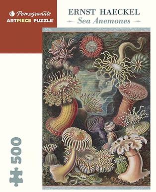 Ernst Haeckel - Sea Anemones