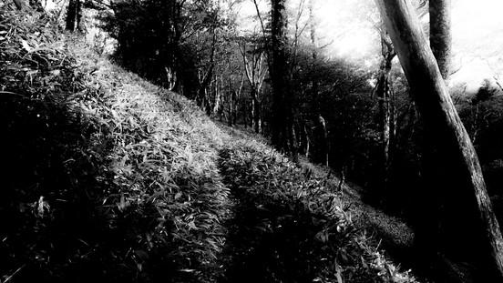Path in Memory