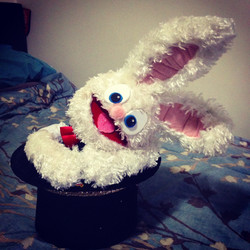 Oscar the Magic Rabbit