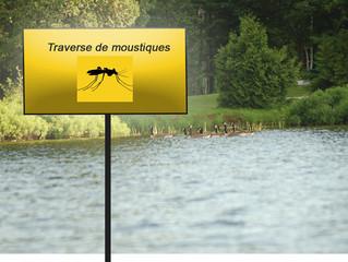 Tu ne devineras jamais comment tu peux éviter les moustiques cet été! Indispensable