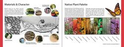 native plant spread