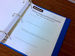 Day 9 Worksheet