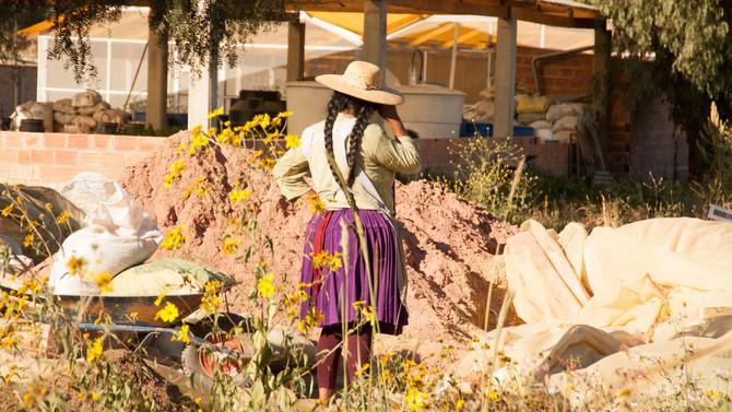 Bæredygtig vækst i Bolivia