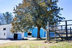 Capstone Farm