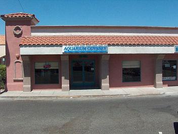 AquariumOdyssey 019.jpg