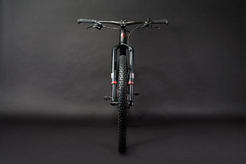 Liteville 301 MK11 Marathon X0 1010 Edition Bike